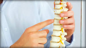 Whats A Facet What Is A Facet Joint Injury Updated For 2018