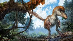 dinosaur extinction information and facts national geographic