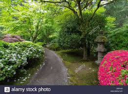 Japanese Garden Plants Garden Path With Stone Lantern Plants And Flowers At Japanese