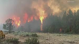Bootleg Fire burns almost 40,000 acres ...