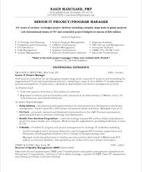 It Director Resume Template It Project Manager Free Resume Samples ...