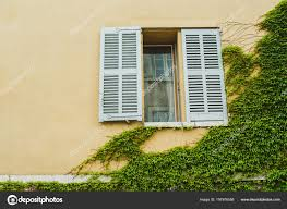 Gelbes Haus Mit Fenster Und Grünen Efeu Stockfoto Jaksa95 197976558