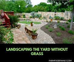 landscaping design ideas without grass