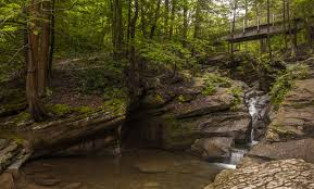 Hiking at Seven Tubs Recreation Area in Wilkes-Barre, PA - UncoveringPA