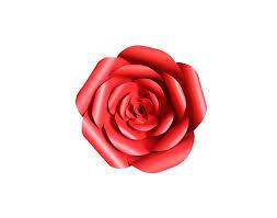 Red Paper Flower Malaysia Graphic Designer Hweh Arts