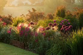 Small Picture Garden Designer Interview Duncan Heather Oxford College of