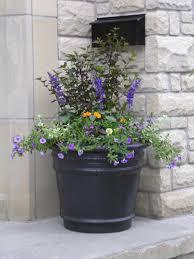 front door plantersFront Door Planters Ideas  Design Front Door Planters  Design