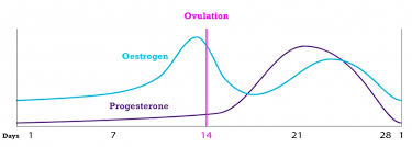 Estrogen And Progesterone Levels In Pregnancy Chart Memorable Progesterone Level Chart Early Pregnancy Australia