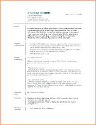 Resume With No Work Experience Adorable Curriculum Vitae Examples For College Students 60 Sample Student