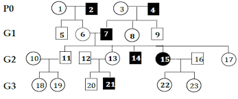 Autosomal Recessive Pedigree Chart Can Someone Help Me With This Pedigree Analysis Biology