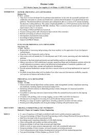Java Developer Resume Example Principal Java Developer Resume Samples Velvet Jobs 22
