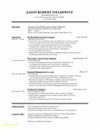 Resume Cv Template For Word Design Professional Minimalist Mac Pc