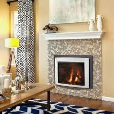 cost of gas fireplace insert elegant gas fireplace inserts s high efficiency bay window insert