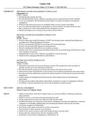 Sample Access Management Resume Access Consultant Resume Samples Velvet Jobs 19