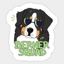 Berner Squad