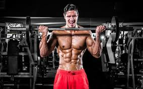 Biceps Exercise Chart 5 Effective Biceps Workout Routines Beginner To Advanced