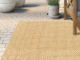 wayfair outdoor rugs