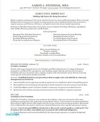 Personal Assistant Resume Examples Extraordinary Resume Examples For Executives Old Version Executive Assistant