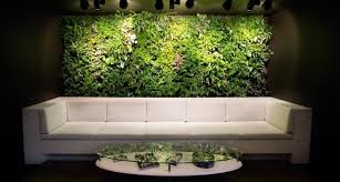 office feature wall ideas. exellent wall office waiting room verical garden feature wall couch olpos design in ideas