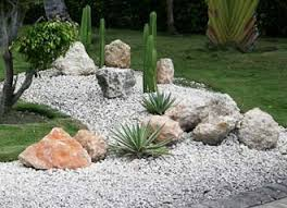 Small Picture Growing Cacti in Your Garden Perfect Gardening Pinterest