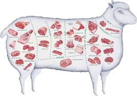 Cuts Of Lamb Chart Pin On For The Health Of It
