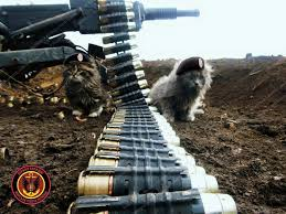С начала текущих суток боевики осуществили три обстрела. Потерь среди личного состава нет, - штаб - Цензор.НЕТ 2817