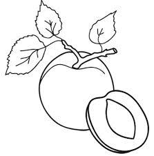 Disegni Di Frutta Da Colorare Immagini Di Frutta Da Stampare