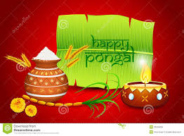 images of pongal festival wishes and greetings cards in tamil images of pongal in tamilnadu