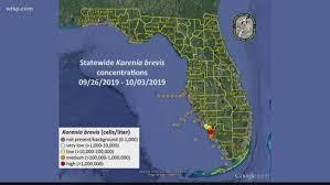 Red Tide Returns Harmful Algae Appears Again In Parts Of