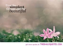 Beauty Of Flowers Quotes Best Of Quotes About Beauty And Flowers 24 Quotes