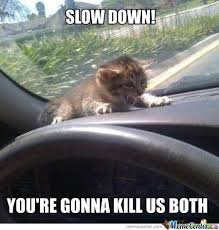 Slow Down Memes. Best Collection of Funny Slow Down Pictures via Relatably.com