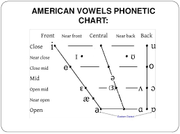 1 The Basis Of Phonetics Phonology