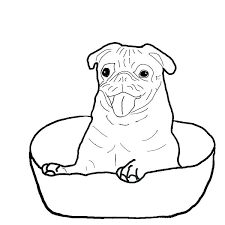 pug coloring is happy inside a bowl page pages free pug coloring sheets page pictures pages also free