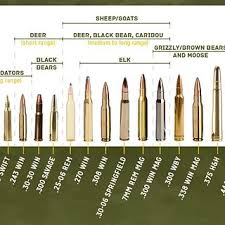 Use This Rifle Caliber Chart To Pick The Right Ammo For Hu