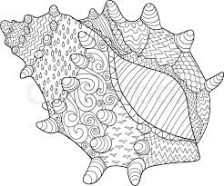 Small Picture Seashell with high details Adult antistress coloring page Black