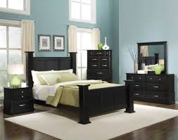 adorable dark furniture for comfortable bedroom ideas with baby blue wall color and white rug