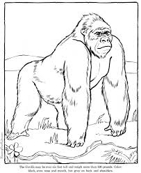 Small Picture Gorilla coloring page Animals Town animals color sheet