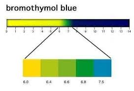 Bromothymol Blue Alchetron The Free Social Encyclopedia