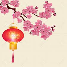 Flower Paper Lanterns Red Chinese Lanterns Hanging On A Branch Of Cherry Blossoms With