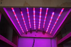 picture of diy led grow light