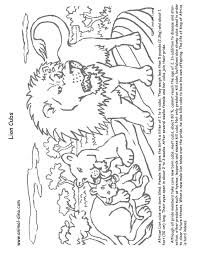Small Picture Animal Coloring Page Lion cubs Print Size Jack the Lizared