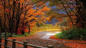 Resultado de imagen para caminos otoño