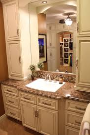 Bathroom Cabinet Tower Bathroom Vanity With Storage Tower Digitalbasins