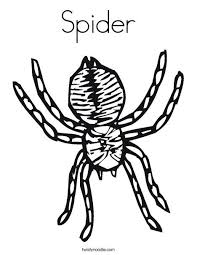 Small Picture 30 best spinnekop images on Pinterest Stock photos Spider and