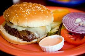 how to write a hamburger essay