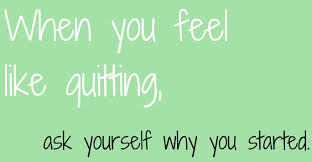 Young Wild Fit - Healthy Living: Motivational Weight-Loss, Health ...