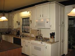 Small Picture Can You Paint Your Kitchen Cabinets Markcastroco