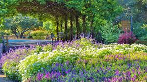 Landscape Design San Antonio Texas San Antonio Botanical Garden The Cultural Landscape Foundation