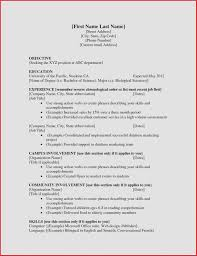 Example Of A Job Resume Good Resume Example For First Job How To