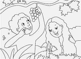 Super Jesus Storybook Bible Coloring Pages Bathfixturesinfo